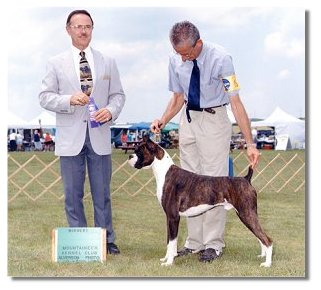 Judge Carl Liepmann awarded BJ WD for his 1st point at the Mountaineer Kennel Club Show.