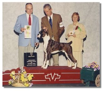 BJ winning Best Puppy in Sweepstakes under judge Robert Phillips